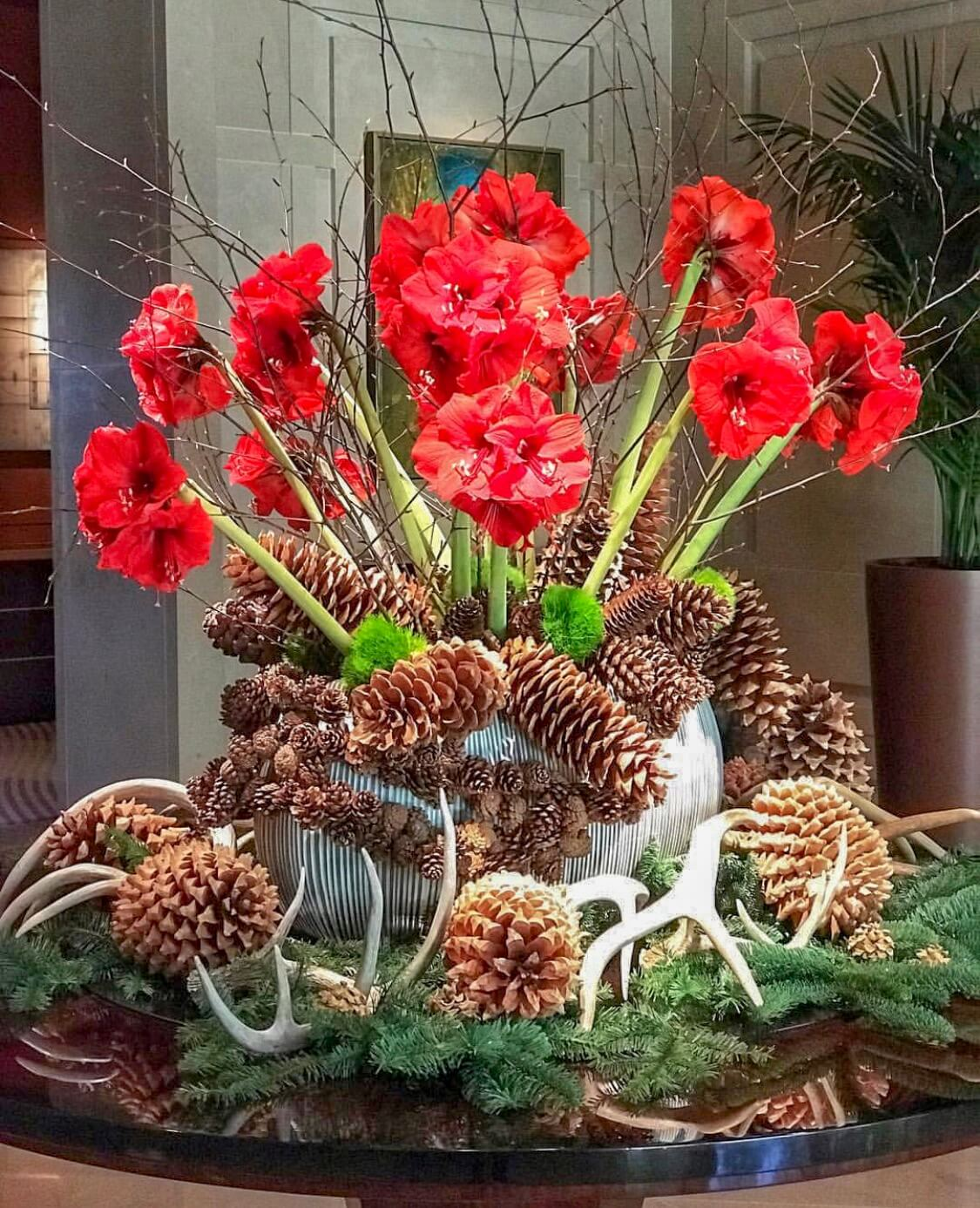 Pinecone and amaryllis display at The Umstead Hotel and Spa